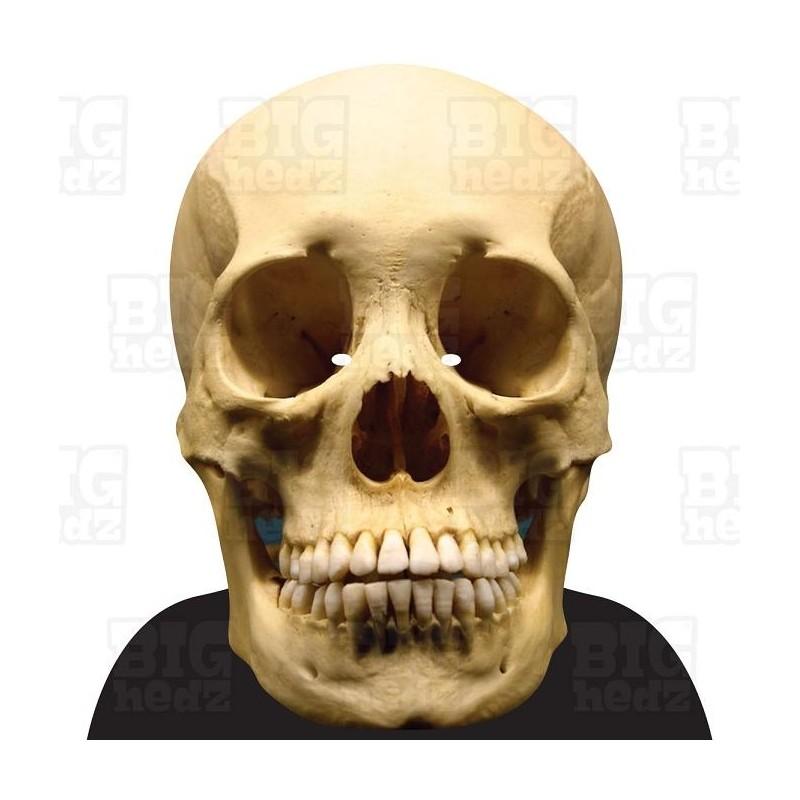 human skull - big a3 face mask by bighedz, celebrity, Skeleton