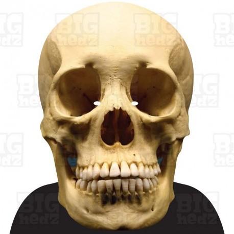 HUMAN SKULL : A3 Size Face Mask BIGhedz