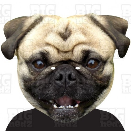 PUG DOG : A3 Size Card Face Mask