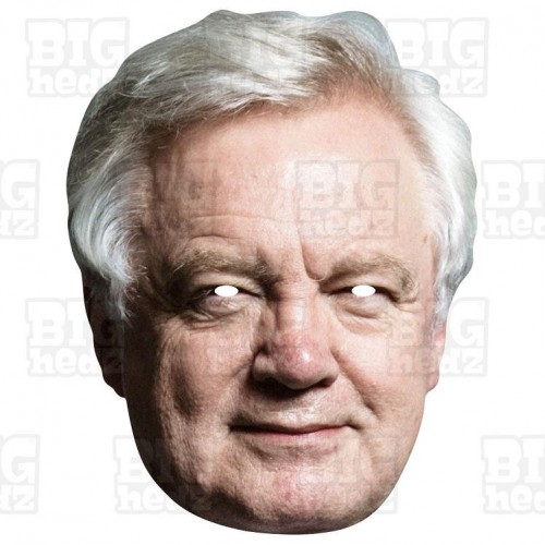David Davis : Life-size Face Mask